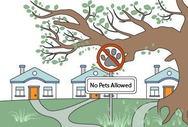 What to Do When Tenants Have Unauthorized Pets