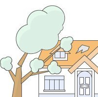 Is a Landlord Responsible for a Fallen Tree?