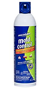 The Best Mold Killer Spray Amp Mildew Remover Nov 2019